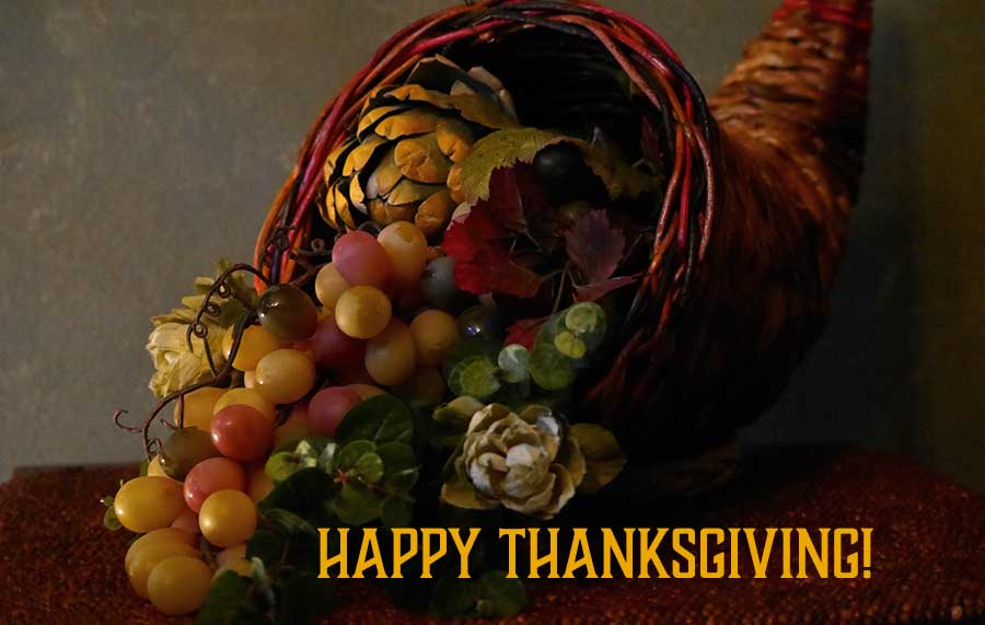 A cornucopia of grapes, artichokes, gourds and more wishing you a Happy Thanksgiving from Carolyn ECooper.com