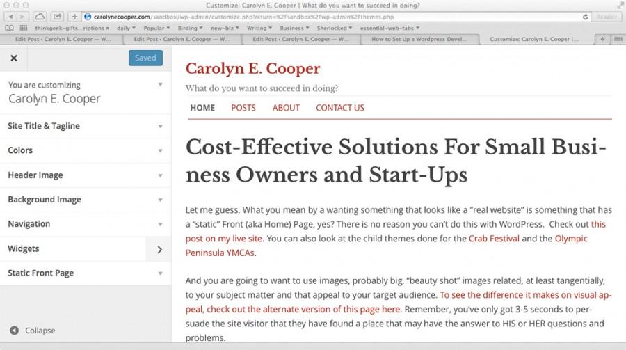 Screen capture of the WordPress Admin theme customizer sidebar