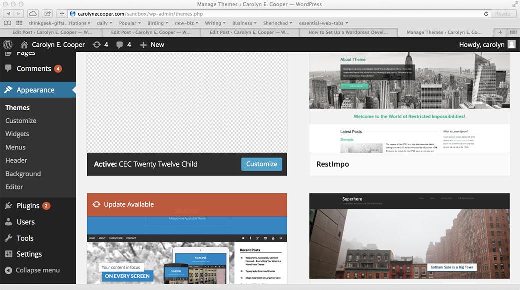 Image of the WordPress Admin Appearance screen.